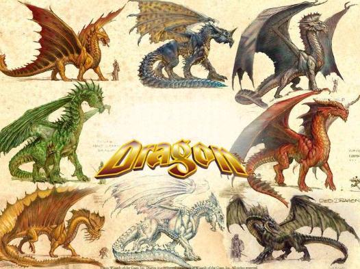 Характеристика желтый земляной дракон и телец
